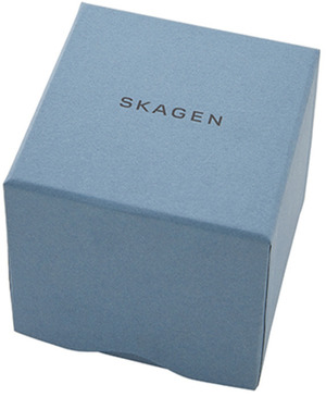Часы SKAGEN SKW2769